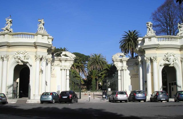 Bioparco zoo de Rome